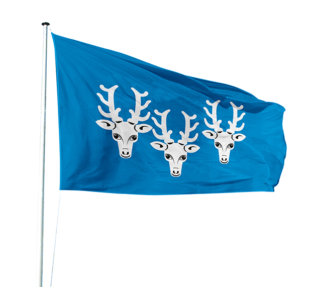 City and town flags