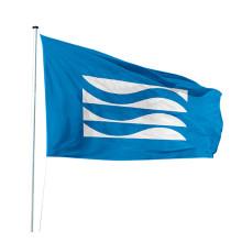 Mastvlaggen